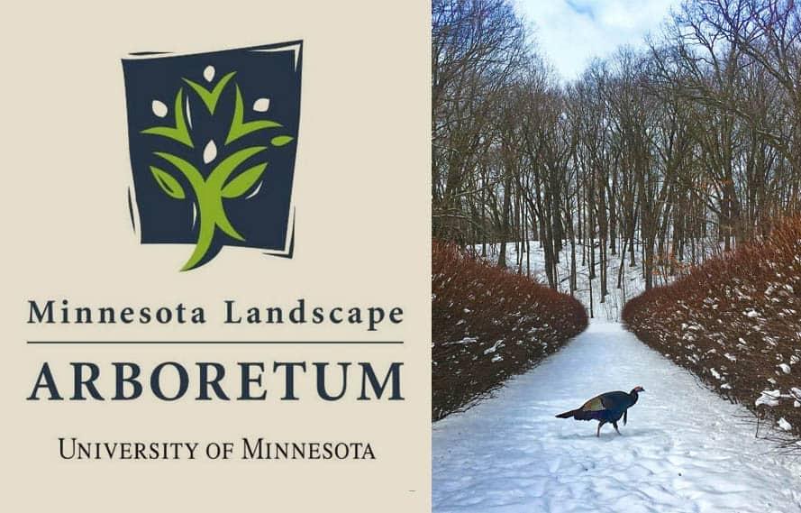 Minnesota Landscape Arboretum Honor
